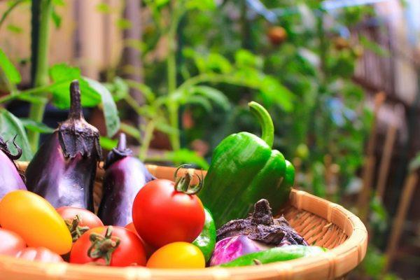 老化の原因をシャットアウト! 残留農薬について学んで活性酸素を予防しよう☆